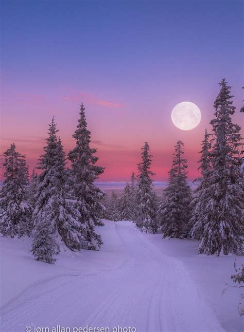 winter creek curve snow trees water reflections mysterious mist of nature best 25 winter landscape ideas on winter white snow and
