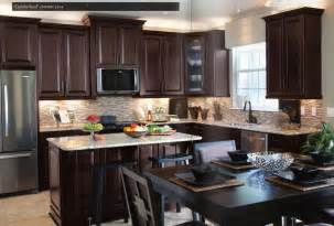 Java Kitchen Cabinets by Richmond Ravenna 14 Day Appointment Selections