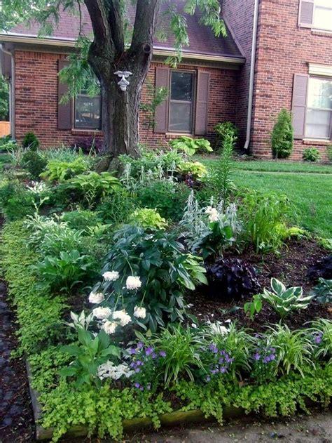 shade garden designs gardens pinterest