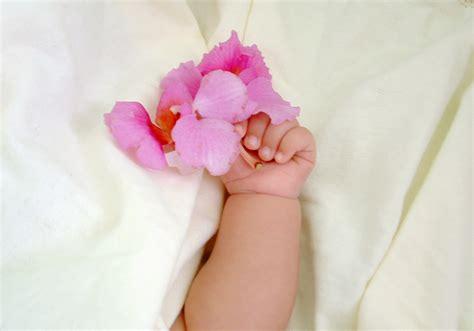 silk flowers to welcome a new baby flower pressflower press
