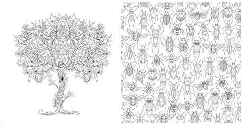 secret garden coloring book new york times grown ups out their crayons