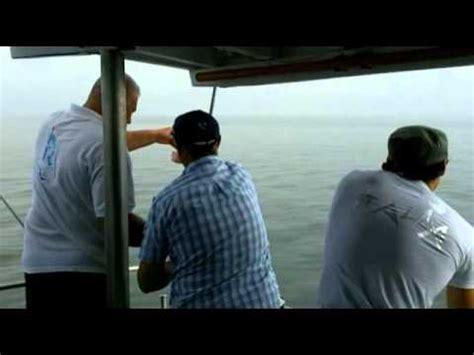 pesca allo sgombro porto garibaldi pesca allo sgombro andrea doria porto garibaldi