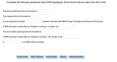 protein used in a sentence solved complete the following sentences about dna packagi