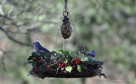 Winter Bird Feeders bird feeders creative hints for attractive design