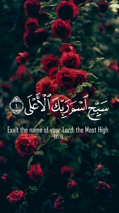 pin  zainab mushtaq ahmed  islam  islam flower