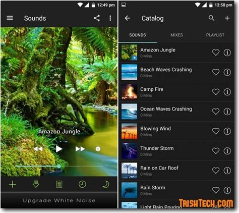 white noise light relax and better with white noise app