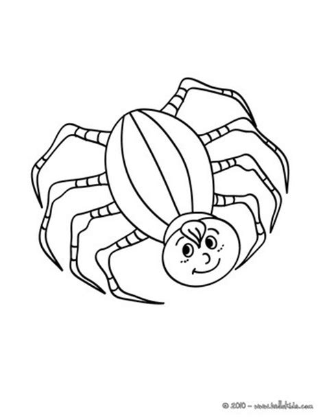 small spider coloring page eight legged insect coloring pages hellokids com