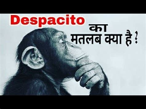 download mp3 despacito song in hindi what is the meaning of despacito song in hindi english