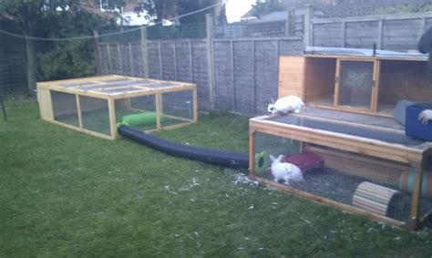 Rabbit Hutches And Runs rabbit hutch with to run rabbits