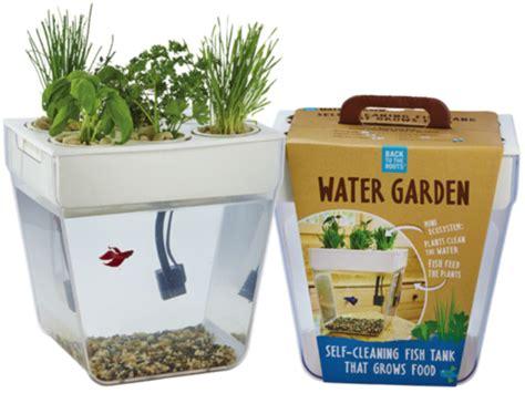 Water Garden Supplies by Water Garden Fish Tank Montessori Child