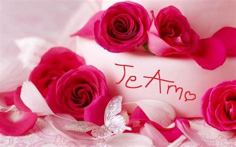 imagenes de flores y rosas image gallery hermosas rosas