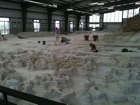ashfall fossil beds in nebraska a pompeii of prehistoric mammals related to