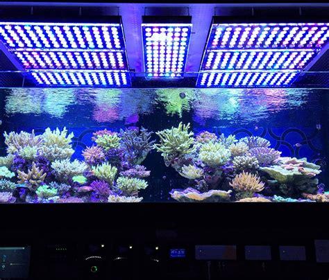 best led light for saltwater aquarium aquarium led lighting photos best reef aquarium led