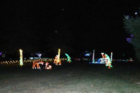 lehigh valley zoo christmas lights holiday lights picture of lehigh valley zoo