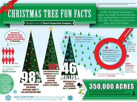 stats christmas trees collateral archives martinez creative