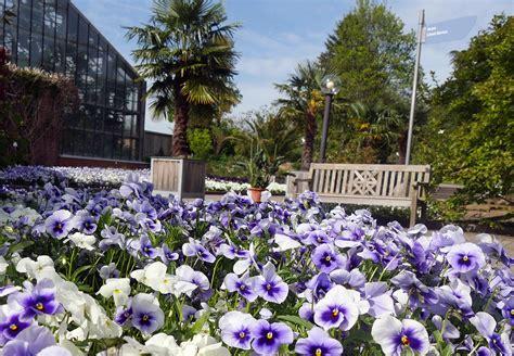 Garten Kiel by Botanischer Garten Kiel Nordtipps