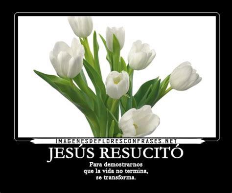 hermosas imagenes de pesame tarjetas de p 233 same cristianas para enviar por facebook