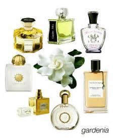 Gardenia Perfume 17 Best Ideas About Gardenia Perfume On