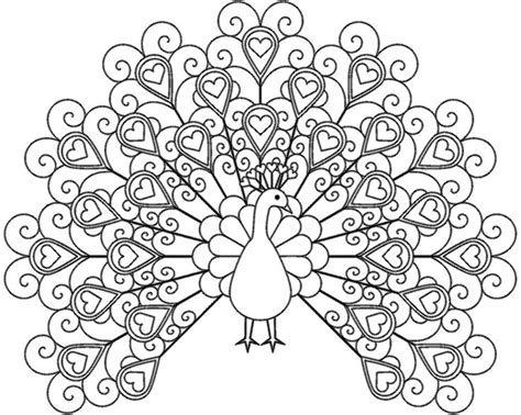 coloring book for your website captivating peacock coloring pages 41 for your coloring