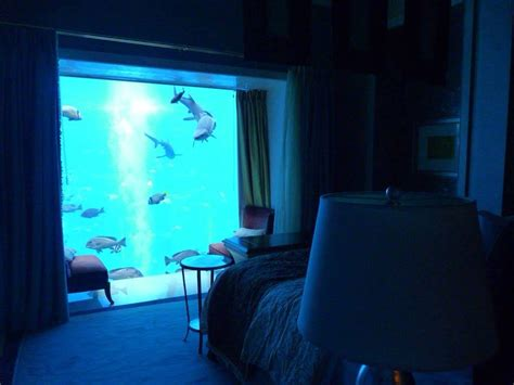 hotel room underwater underwater hotel room future trips