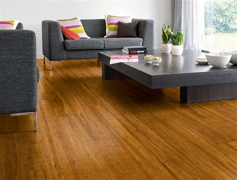 Bamboo Flooring Carpet Court by Appealing Carpet Court Bamboo Flooring Images Carpet