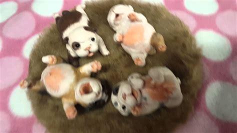 silicone puppies mini silicone puppies here again