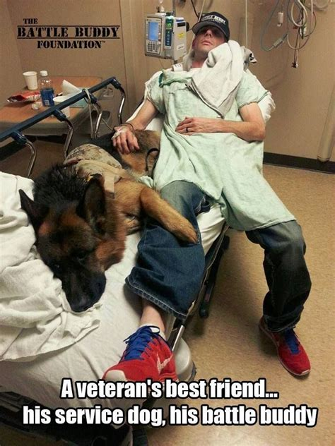service dogs for anxiety if you re not careful anxiety can your using service dogs for anxiety