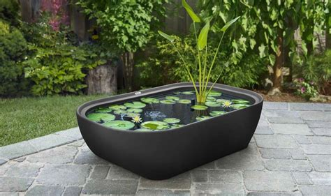 Patio Water Garden by Garden365 Water Garden Garden365