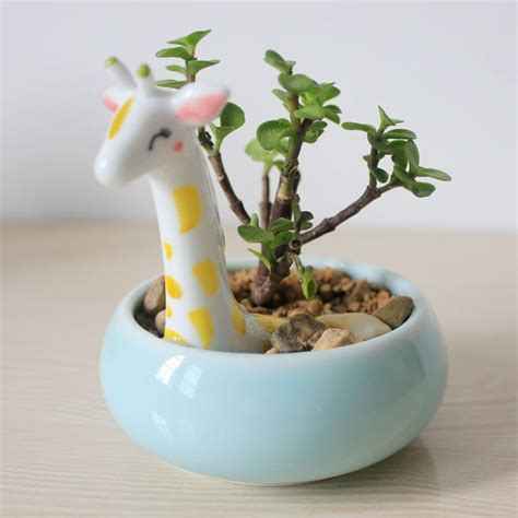 cute pots for plants 10 images about home dillo coi fiori on pinterest house