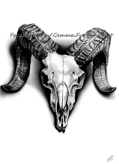 ram head tattoo 17 best images about rams on horns the skulls