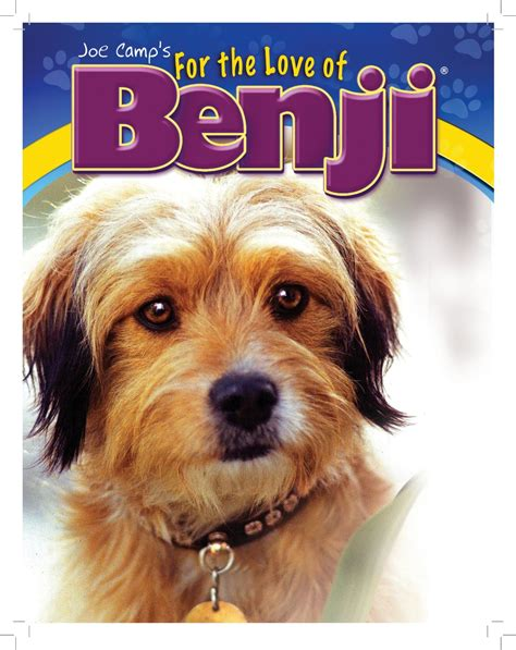 benji the breed benji breed breeds picture