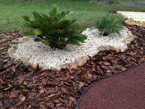 Landscape Mulch Pictures Seashells In The Garden Florida Friendly Landscaping