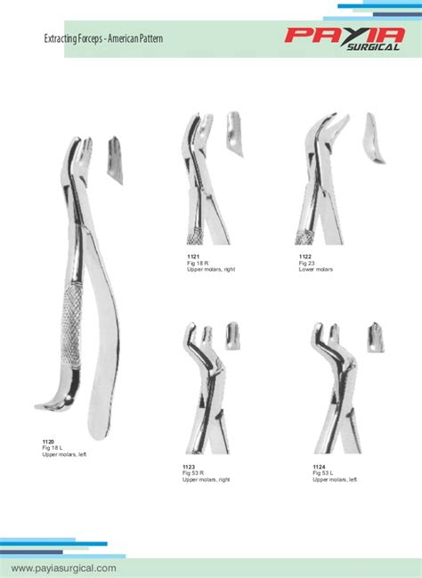 dental section payia surgical dental section catalog
