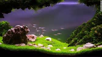 Aquascaping Materials Pimp My Fish Tank This Is The Eerie Beautiful World Of