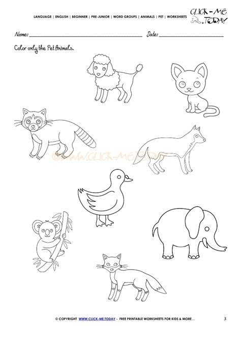 printable worksheets animals pet animals worksheet activity sheet 3