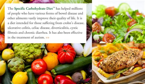 carbohydrates purpose breaking the vicious cycle the specific carbohydrate diet