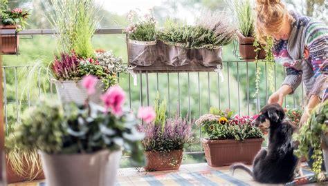 terrazzi in fiore agricola balconi in fiore