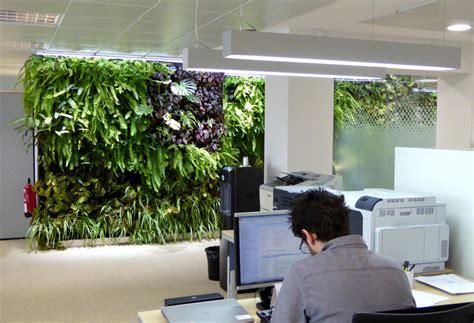 imagenes de paredes verdes jardines verticales en madrid 1 a 241 o despu 233 s singulargreen