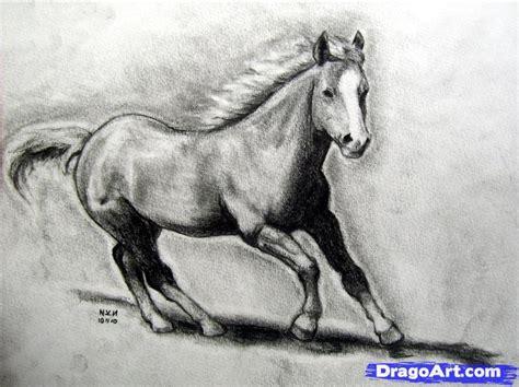 how to draw a realistic how to draw a realistic draw real step by step farm animals animals