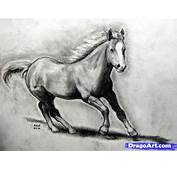 How To Draw A Realistic Horse Real Step By