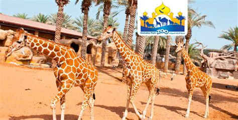 emirates zoo ticket offers entrance tickets meal feed the animals
