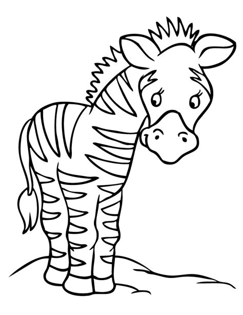 cute zebra coloring page free coloring pages of baby zebras