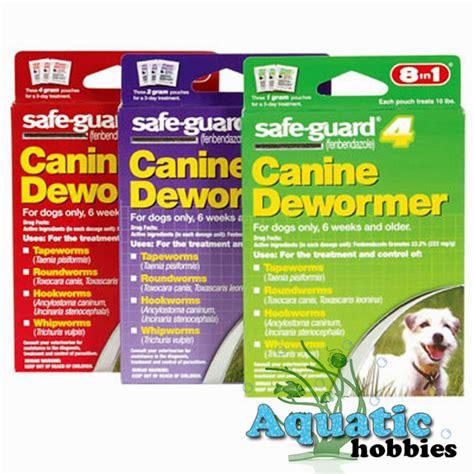 best worm medicine for puppies mini doberman puppies puppies puppy