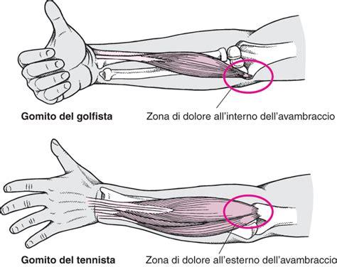 dolore interno gomito lesioni dei gomiti lesioni e avvelenamento manuale msd