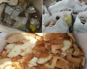 limbah roti afkir untuk pakan ternak