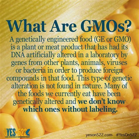 How Does It Take To Detox From Gmos by What Are Gmo S Peoplecleaner