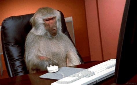 new year monkey animated gif work animated gif