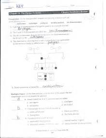 genetics study guide worksheet answers share the knownledge