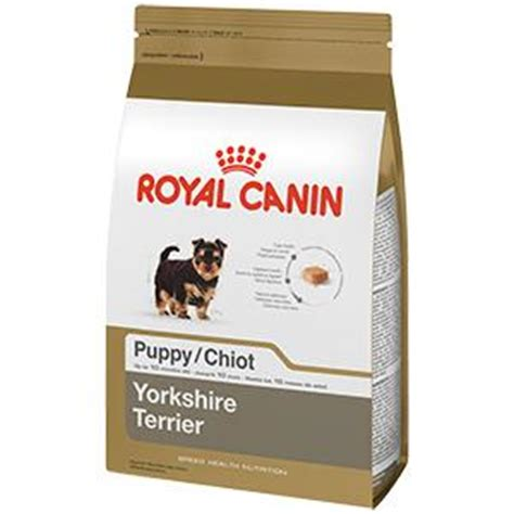 yorkie puppy treats royal canin breed health nutrition terrier puppy food 2