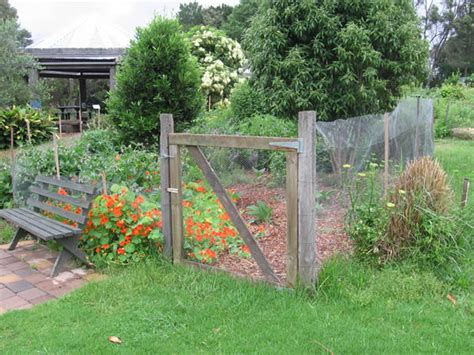 backyard permaculture australia permaculture gardening home design ideas and pictures
